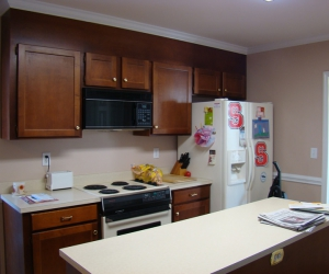 Kitchen Remodeling (Before)